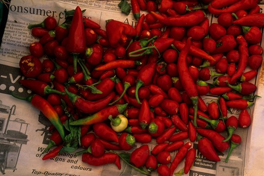 MALTA, VALLETTA, MARSAXLOKK, FISHING VILLAGE, MARKET, CHILI PEPPERS : Stock Photo
