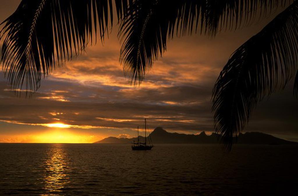 Stock Photo: 4163-16820 FRENCH POLYNESIA, SOCIETY ISLANDS, TAHITI, VIEW OF MOREA, SUNSET, SAILBOAT