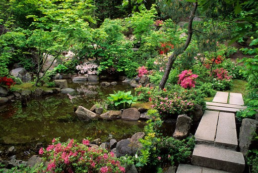 OREGON, PORTLAND, JAPANESE GARDEN, NATURAL GARDEN, STONE BRIDGE, AZALEAS : Stock Photo