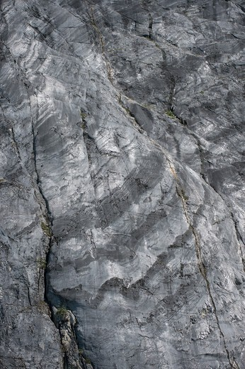 Stock Photo: 4163-21218 Cliff with striations carved and polished by a glacier, Glacier Bay National Park, Alaska, USA