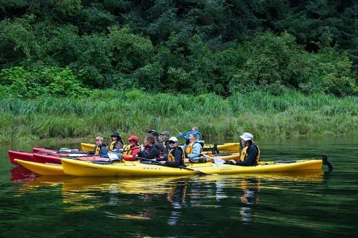 Passengers from cruise ship Safari Endeavour sea kayaking at Pavlof Harbor in Chatham Strait, Chichagof Island, Tongass National Forest, Alaska, USA : Stock Photo