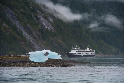 View of cruise ship Safari Endeavour at anchor at Fords Terror, Endicott Arm, Tongass National Forest, Alaska, USA with small icebergs in foreground : Stock Photo