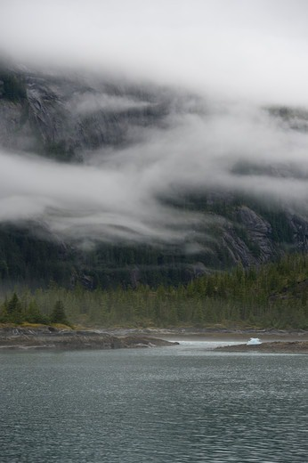 Stock Photo: 4163-21357 Fog rising out of forest after rain at Fords Terror, Endicott Arm, Tongass National Forest, Alaska, USA