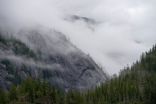 Stock Photo: 4163-21361 Fog rising out of forest after rain at Fords Terror, Endicott Arm, Tongass National Forest, Alaska, USA
