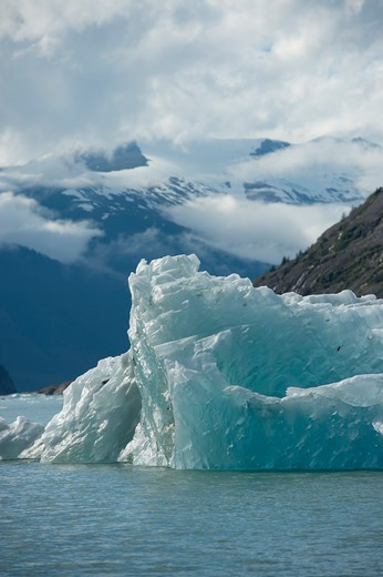Stock Photo: 4163-21399 Iceberg floating near the Dawes Glacier, Endicott Arm, Tongass National Forest, Alaska, USA