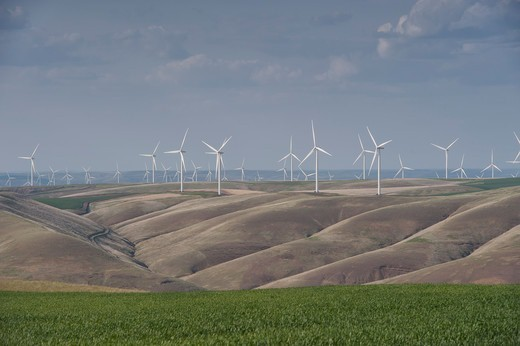 Stock Photo: 4163-21425 Hopkins Ridge Wind Facility In The Dayton Area In Eastern Washington, Usa