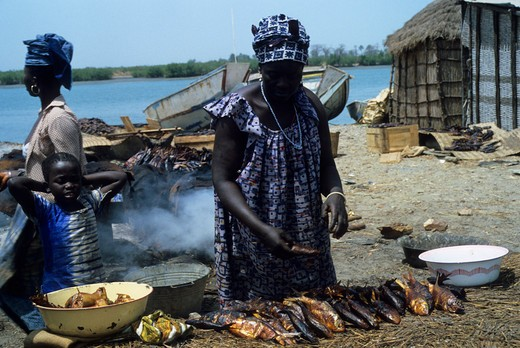 Stock Photo: 4163-5962 AFRICA, GAMBIA, GAMBIA RIVER, FISHING VILLAGE, WOMAN SMOKING FISH