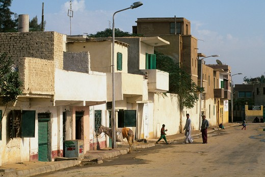 Stock Photo: 4163-7166 EGYPT, CAIRO, GIZA, STREET SCENE, LOCAL HOUSES