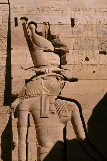 EGYPT, ASWAN, NILE RIVER, AGILKIA ISLAND, PHILAE, TEMPLE OF ISIS, CLOSE-UP OF HORUS : Stock Photo