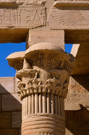 EGYPT, ASWAN, NILE RIVER, AGILKIA ISLAND, PHILAE, WEST COLONNADE, CLOSE-UP OF FLORAL CAPITAL : Stock Photo