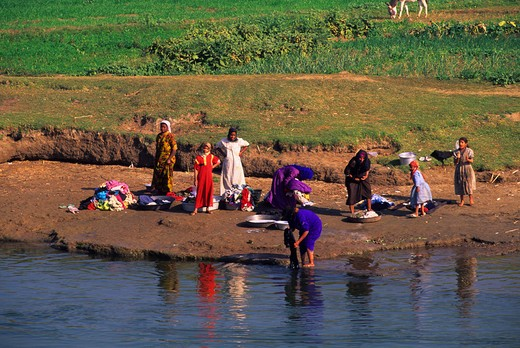 Stock Photo: 4163-7416 EGYPT, NILE RIVER BETWEEN LUXOR AND DENDERA, PEOPLE DOING LAUNDRY