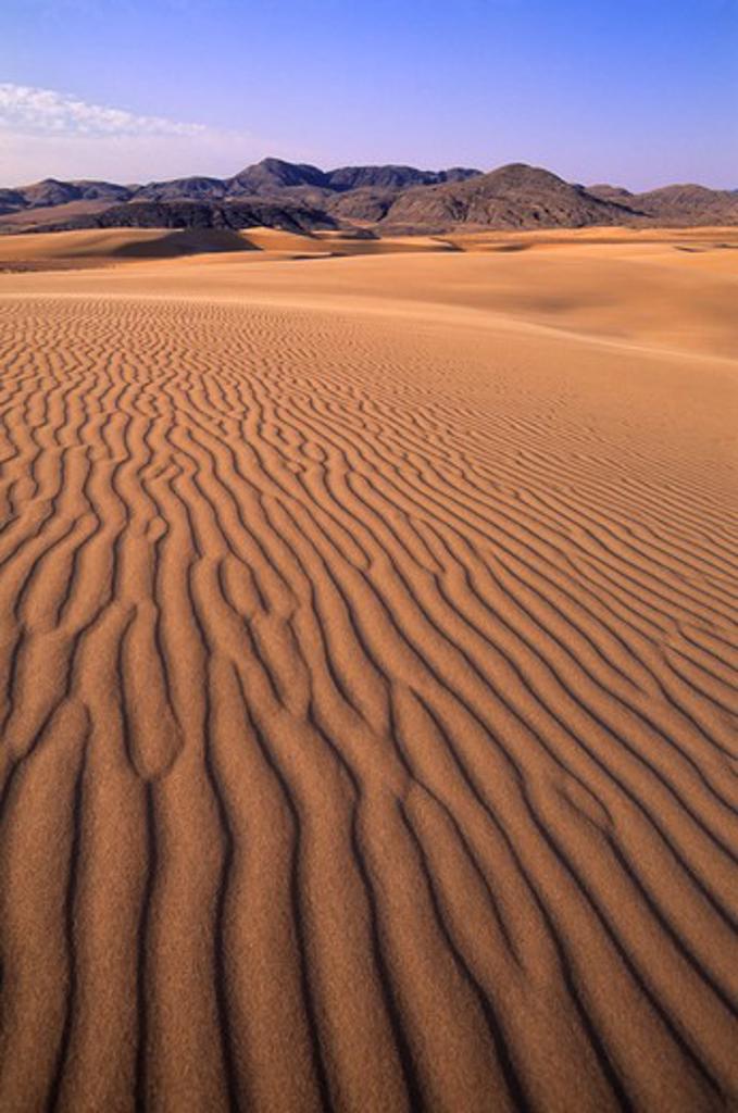 NAMIBIA, NAMIB DESERT, KUNENE RIVER AREA, SAND DUNES : Stock Photo