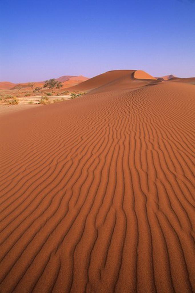 NAMIBIA, NAMIB-NAUKLUFT NATIONAL PARK, SOSSUSVLEI, SAND DUNES : Stock Photo