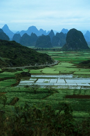 CHINA, GUILIN, VIEW OF LIME STONE MOUNTAINS WITH FIELDS NEAR THE LI RIVER : Stock Photo