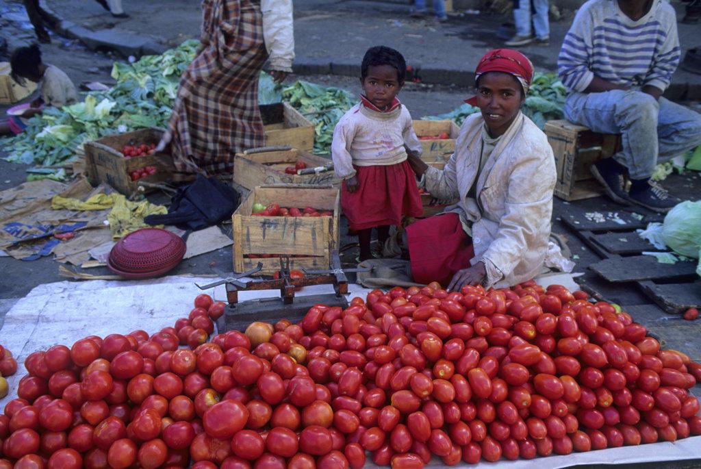 Stock Photo: 4168-10600 Madagascar, Antananarivo, Zoma Market Scene, Tomatoes For Sale
