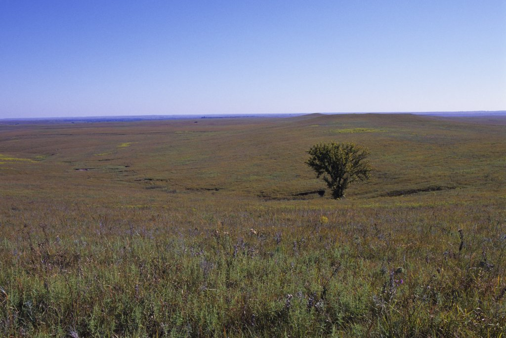 Stock Photo: 4168-13009 USA, Kansas, Flint Hills, Near Strong City, Tallgrass Prairie National Preserve