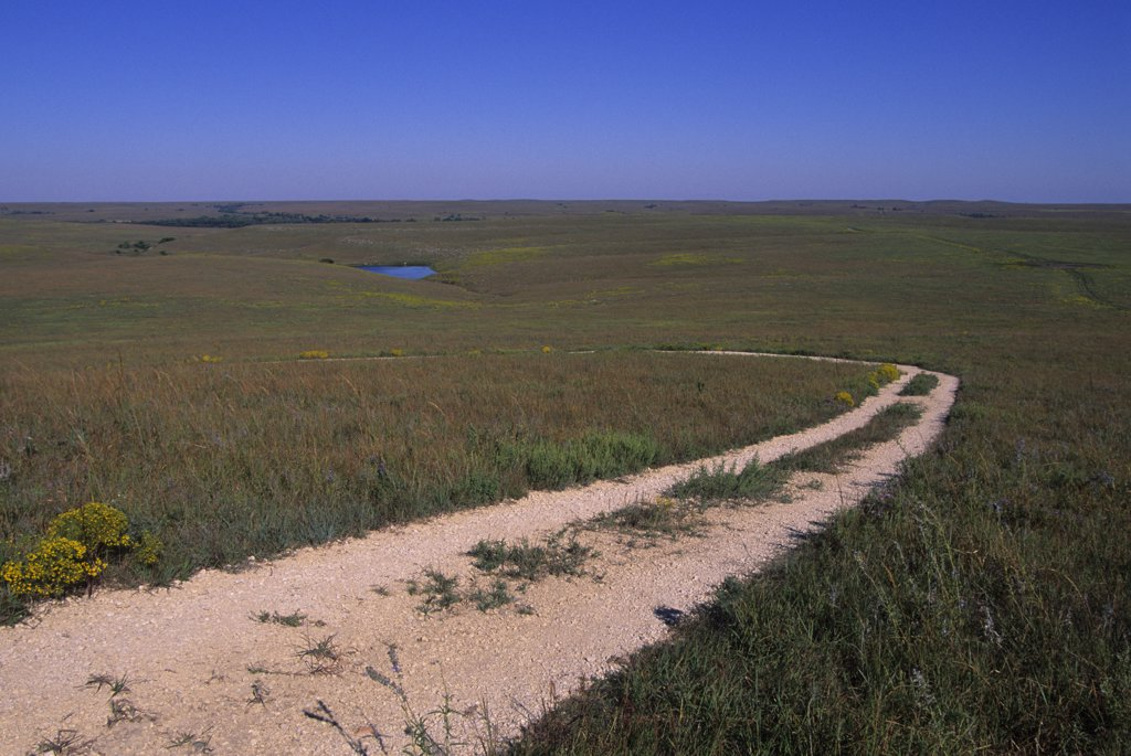 Stock Photo: 4168-13011 USA, Kansas, Flint Hills, Near Strong City, Tallgrass Prairie National Preserve, Road