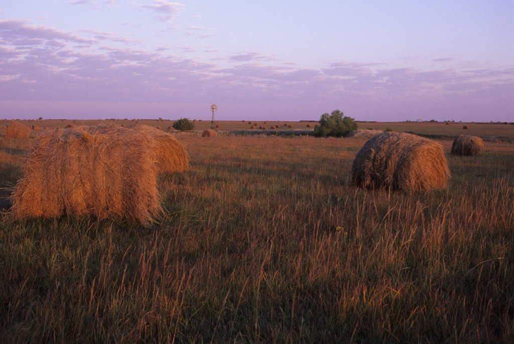 Stock Photo: 4168-13024 USA, Kansas, Flint Hills, Near Alta Vista, Highway 177, Tallgrass Prairie, Hay Bales In Sunset With Windmill In Background