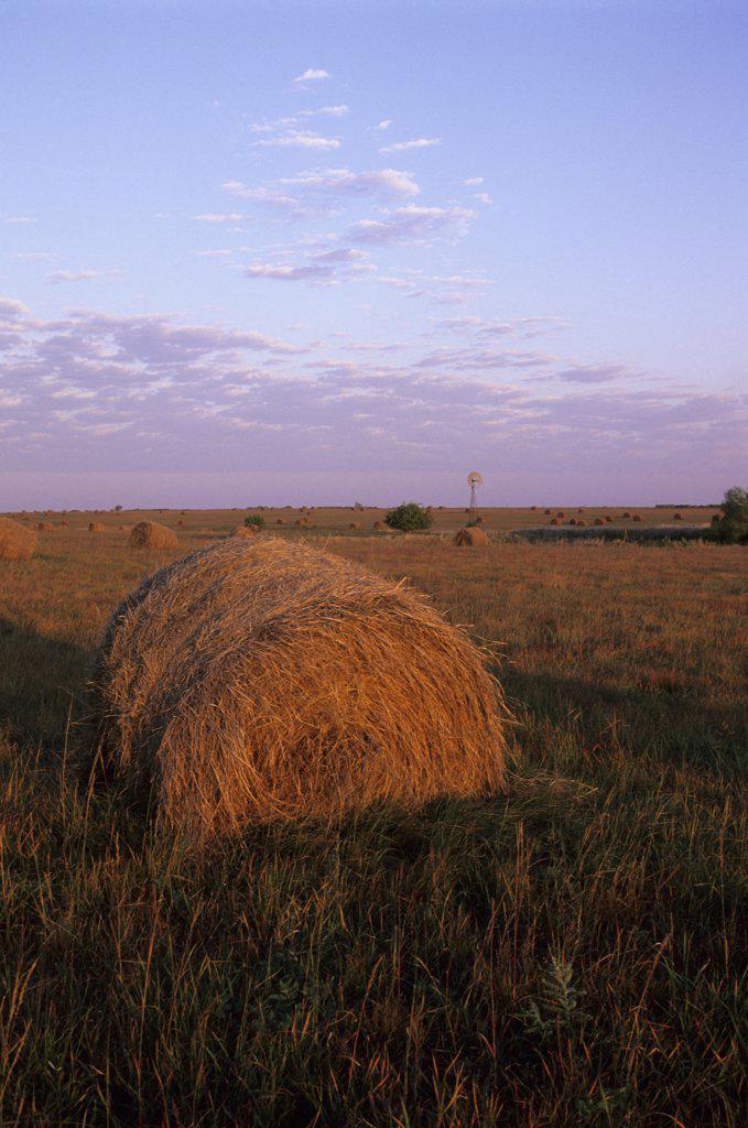 USA, Kansas, Flint Hills, Near Alta Vista, Highway 177, Tallgrass Prairie, Hay Bales : Stock Photo