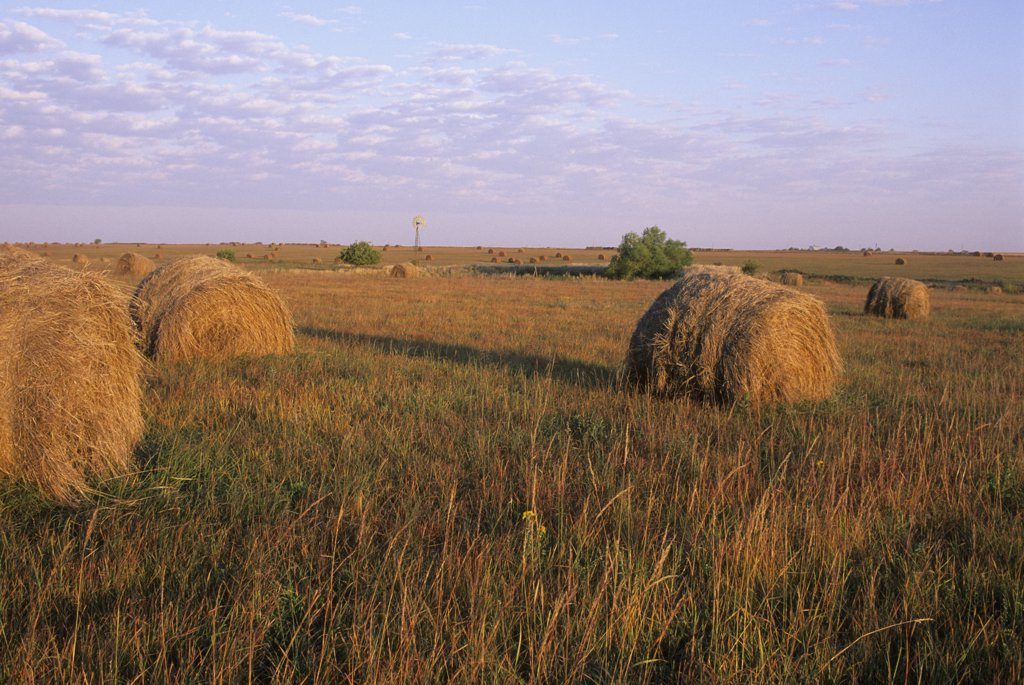 Stock Photo: 4168-13026 USA, Kansas, Flint Hills, Near Alta Vista, Highway 177, Tallgrass Prairie, Hay Bales