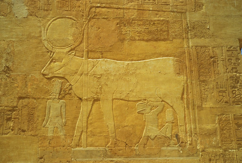 Stock Photo: 4168-13900 Egypt, Near Luxor, Deir El-Bahri, Temple Of Queen Hatshepsut, Ancient Egyptian Heiroglyphs