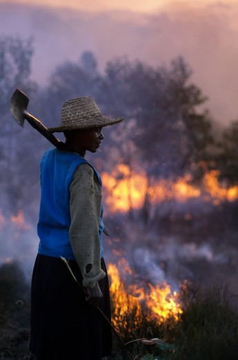 MADAGASCAR, NEAR MANTASOA, FARMERS BURNING LAND, WOMAN : Stock Photo