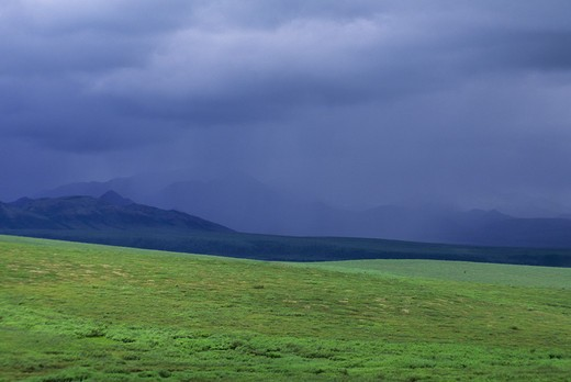 Stock Photo: 4168-3572 Usa, Alaska, Denali National Park, Rain
