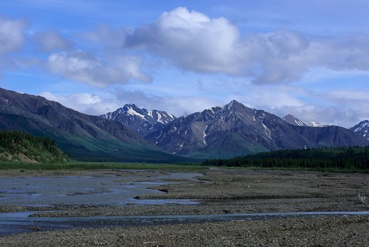 Usa, Alaska, Denali National Park, Teklanika River : Stock Photo