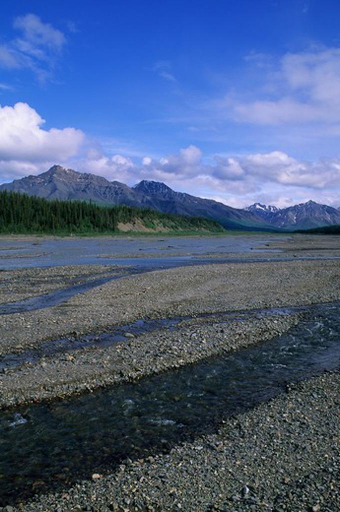 Usa, Alaska, Denali National Park, Teklanika River : Stock Photo