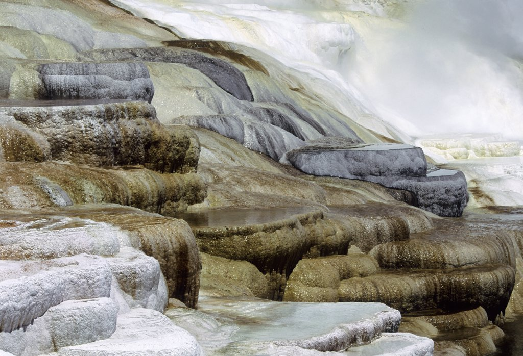 Stock Photo: 4168-8951 Usa, Wyoming, Yellowstone National Park, Mammoth Hot Springs, Canary Spring Terrace