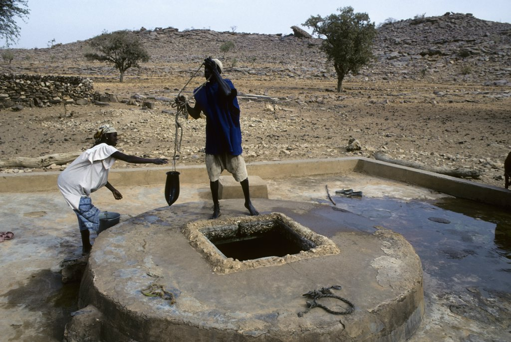 Stock Photo: 4168-9557 Mali, Songho Village, Man Getting Water Out Of Well To Water His Animals