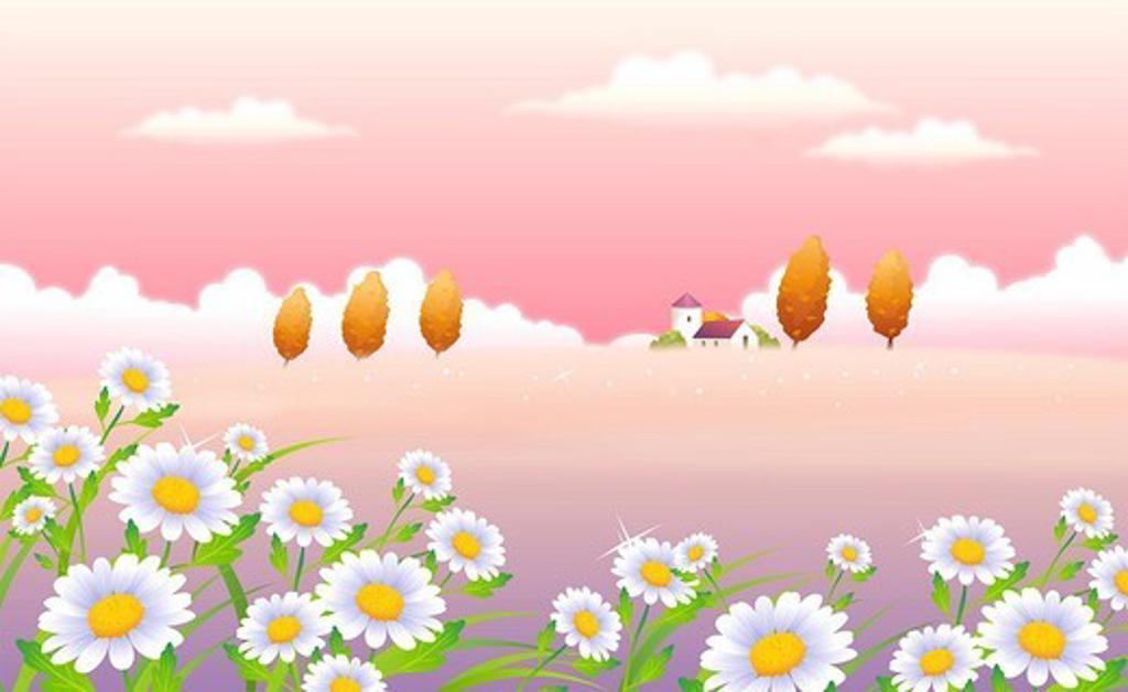 Flowers in a field : Stock Photo