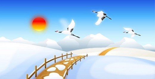 Birds flying on snowcapped land : Stock Photo