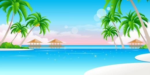 Palm trees on the beach : Stock Photo
