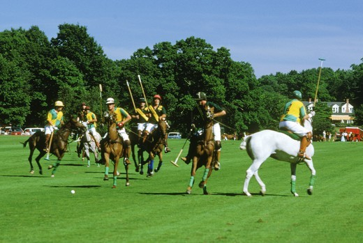 Polo players in team action at Campo de Polo in Buenos Aires, Argentina : Stock Photo