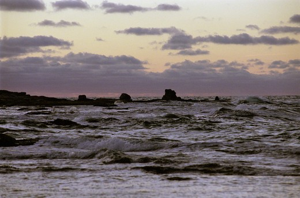 At Langhammars on Gotland : Stock Photo