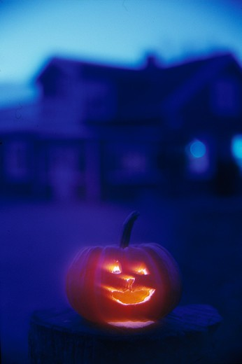 Stock Photo: 4176-1560 Halloween pumpkin
