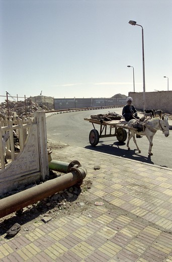 Old man with his donkey in Hurghada Egypt : Stock Photo