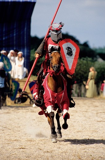 Front view of a horse warrior : Stock Photo