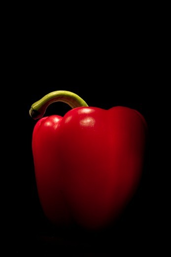 Studio shot of a red capsicum : Stock Photo