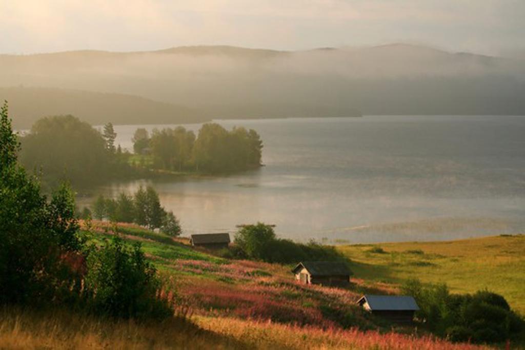 Stock Photo: 4176-19109 High angle view of houses at a lakeside, Lake Vikarsjon, Hedeviken, Harjedalen, Sweden