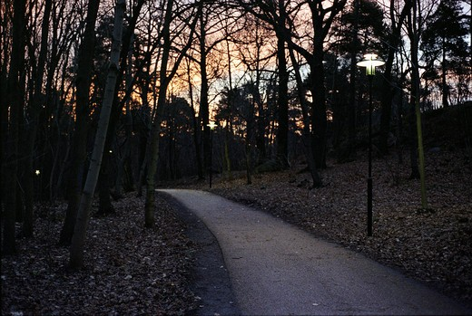 Stock Photo: 4176-20604 Way in a park, Sweden