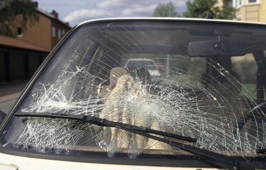 A car with broken windshield : Stock Photo