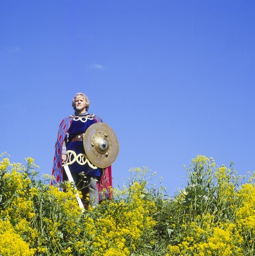 Stock Photo: 4176-22419 Low angle view of a mature man holding a sword and a shield