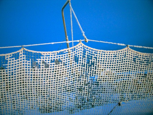 Fishing net on a snow covered landscape, Sweden : Stock Photo