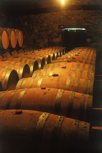Barrels of French armagnac at small cellar in Gascogne district : Stock Photo