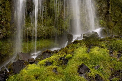 Small waterfall, South Iceland. : Stock Photo