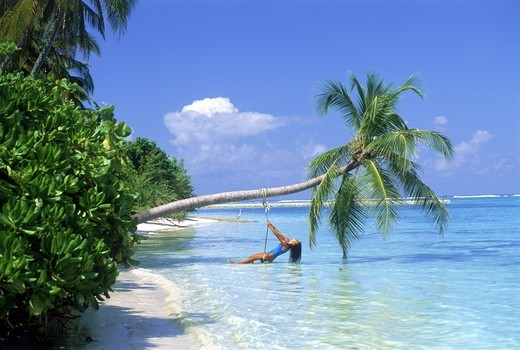 Woman in swing hanging from palm tree in Maldive Islands : Stock Photo