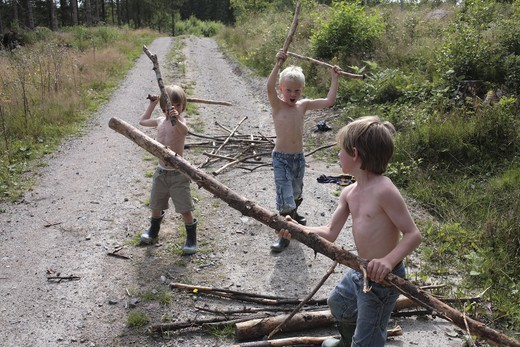 Stock Photo: 4176-38276 Boys playing with sticks, Sweden
