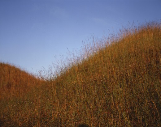 Stock Photo: 4176-4056 Grassy hills
